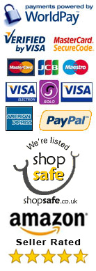 secure payment processing